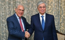 The President of Kazakhstan meets José Ángel Gurría, Secretary-General of the Organisation for Economic Cooperation and Development